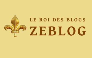 zeblog.net, le logo